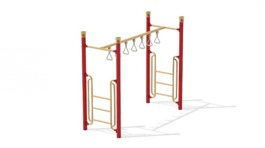 double trapeze overhead ladder