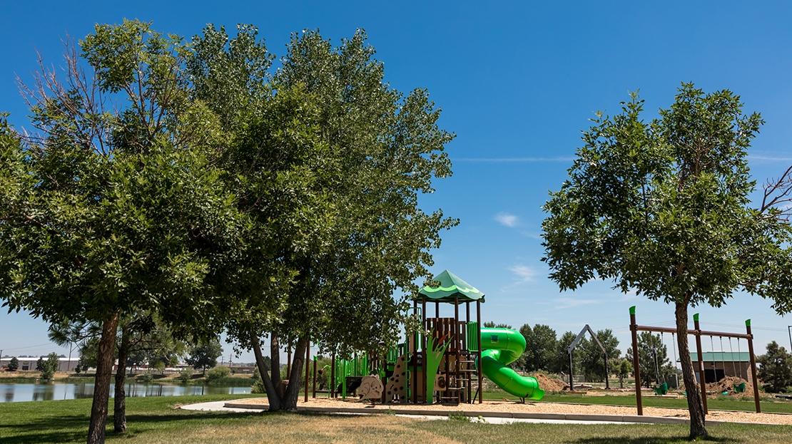 milliken colorado park