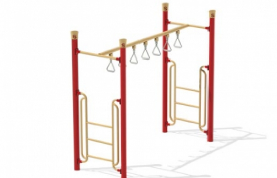 trapeze ring overhead ladder