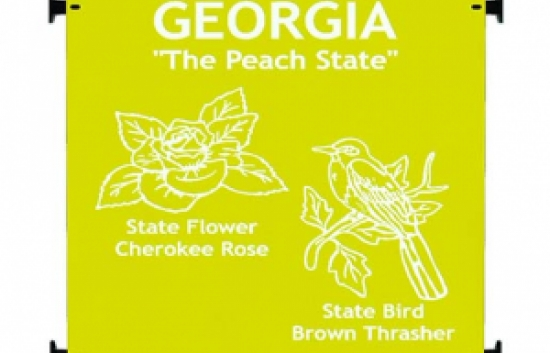 georgia state playground panel for commercial playgrounds